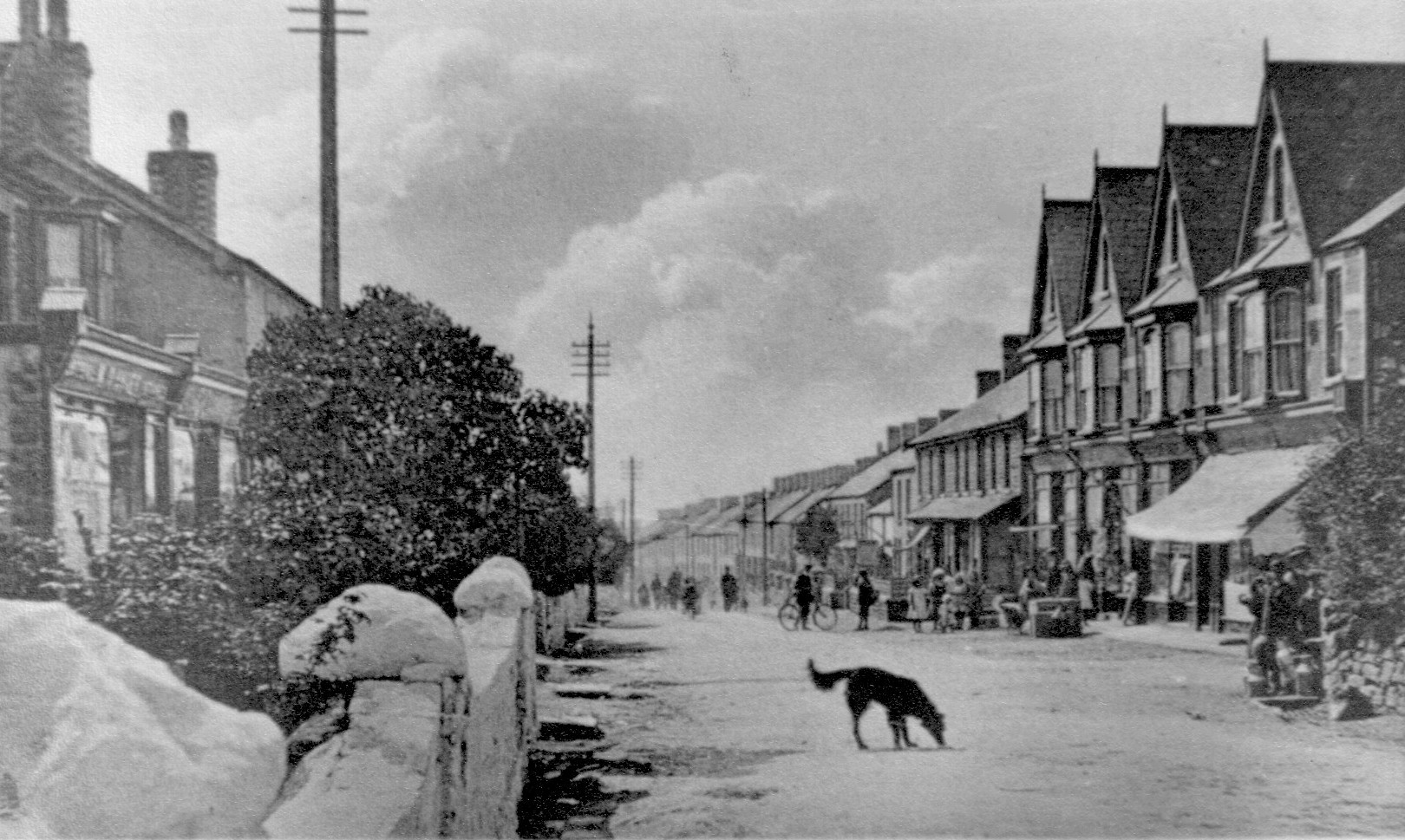 Kenfig Hill (dog in street) c1900